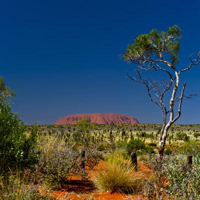 Where is Uluru?